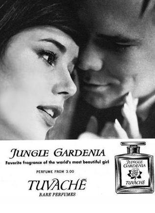 Jungle Gardenia_vintage perfume ad_ep25
